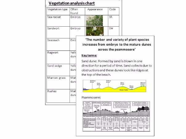 Coasts (sand dunes and transects) field work booklet Eduqas and AQA