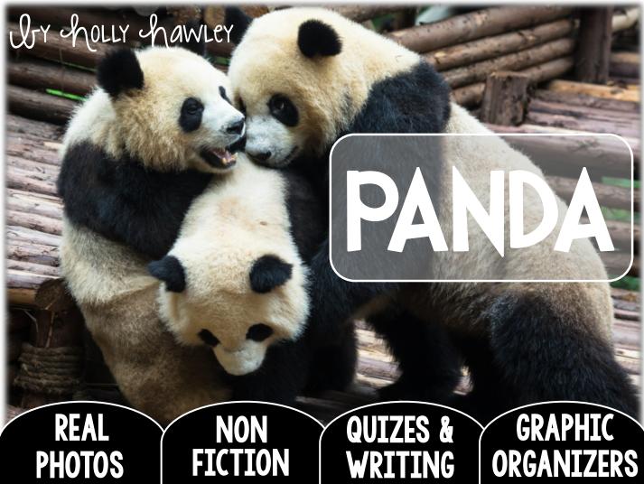 Panda-A Research Project-UK Version