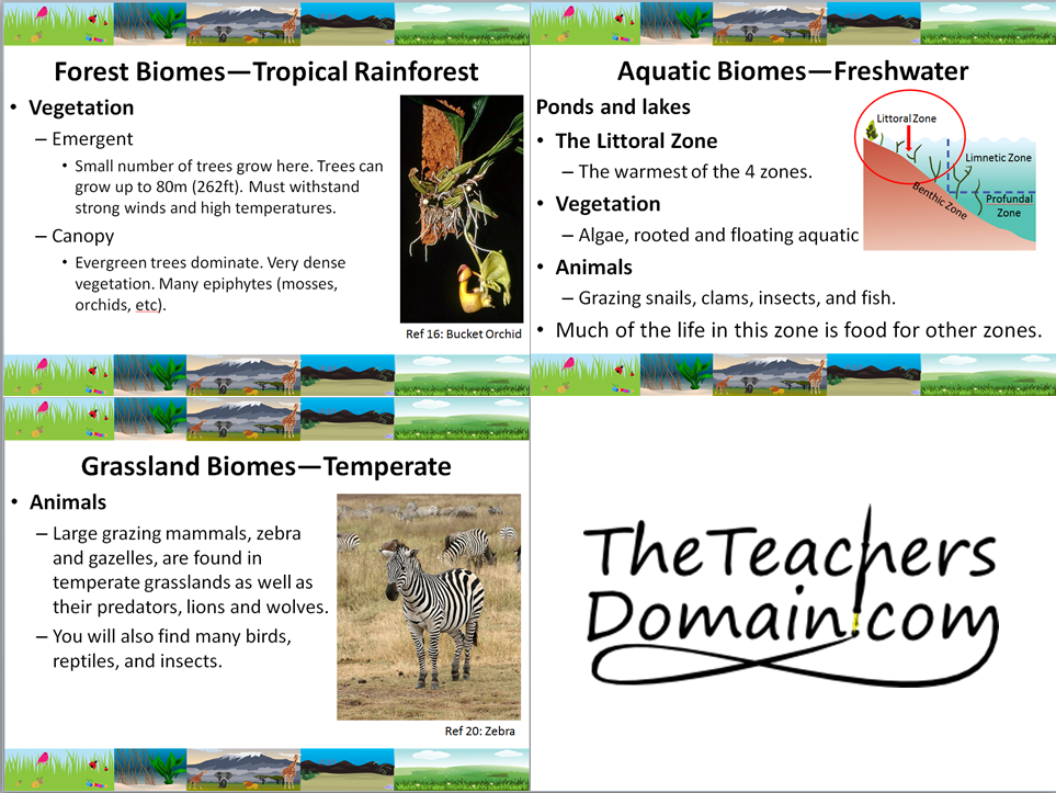 World Biome Slide Show