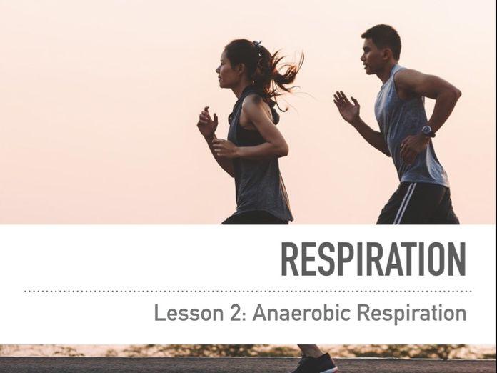 Aerobic & Anaerobic Respiration KS3/KS4