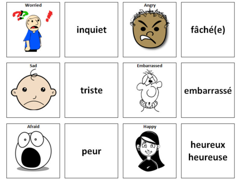 Feelings/Emotions: French Vocabulary Card Sort