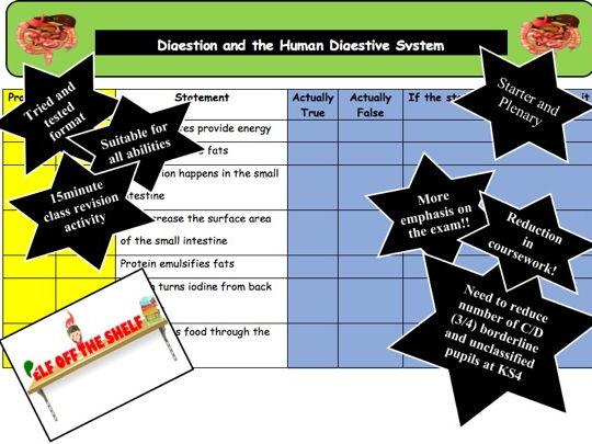 Digestion Revision KS4 Starter and Plenary Activity