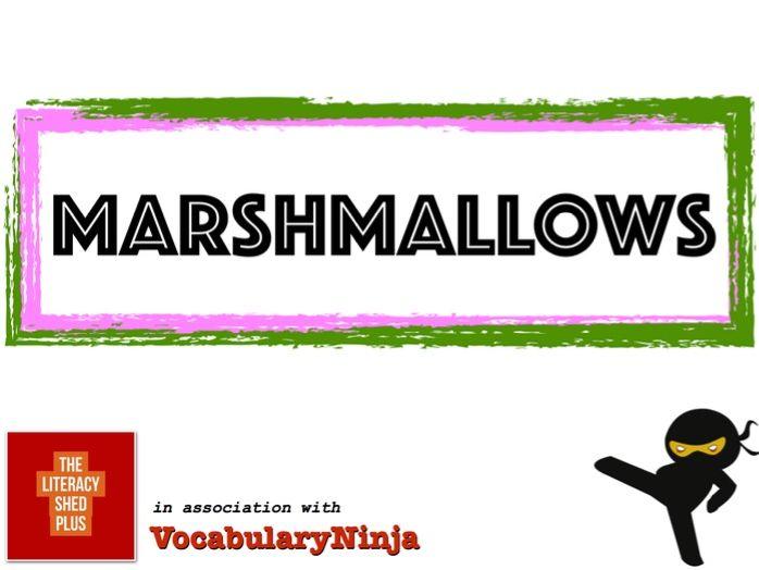 Marshmallows Vocabulary Pack