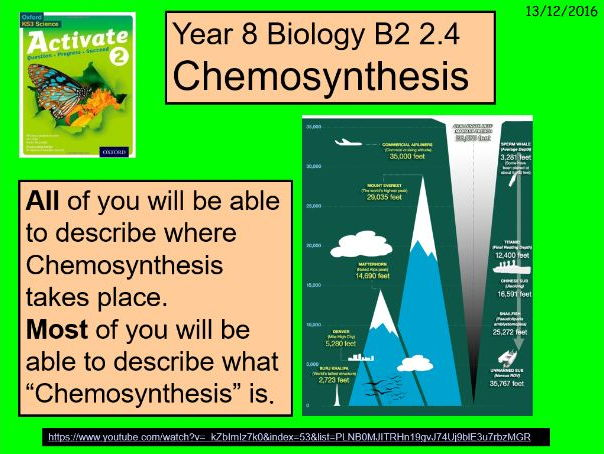 what does chemosynthesis mean