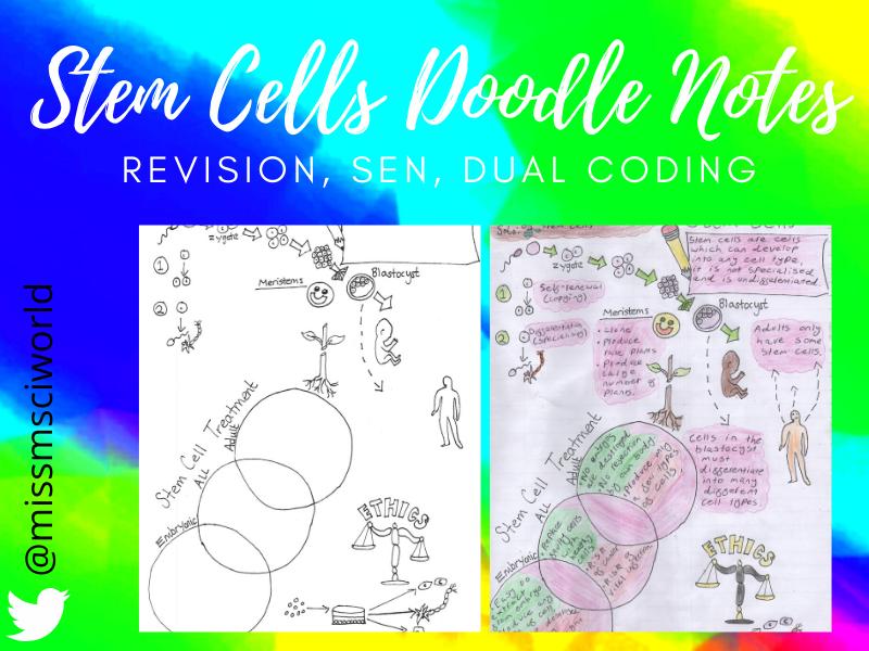 Stem Cells Science Doodle Notes