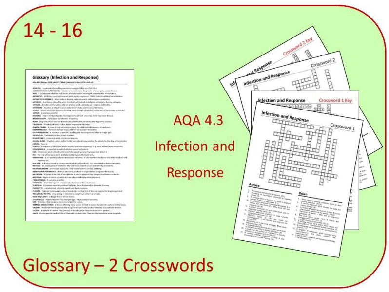 B3: Infection Glossary and 2 Crosswords (AQA 9-1 GCSE Science)