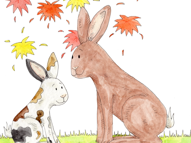 Rex the Rare Hare, Hannah's Phonic Stories, are sound