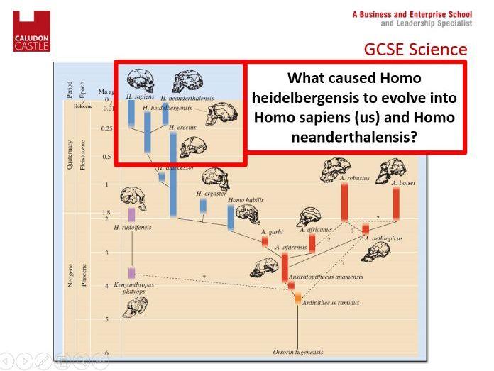 New Spec GCSE Biology AQA 4.6.3.2 Speciation
