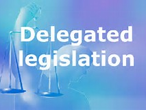 Delegated Legislation Worksheet