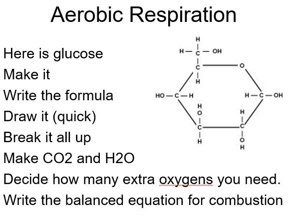 Biochemical Reactions - Respiration and More -