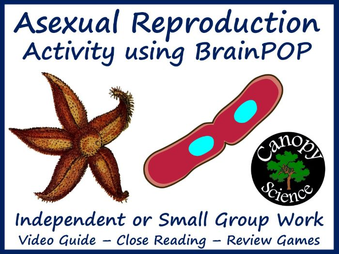 Asexual Reproduction Activity using BrainPOP