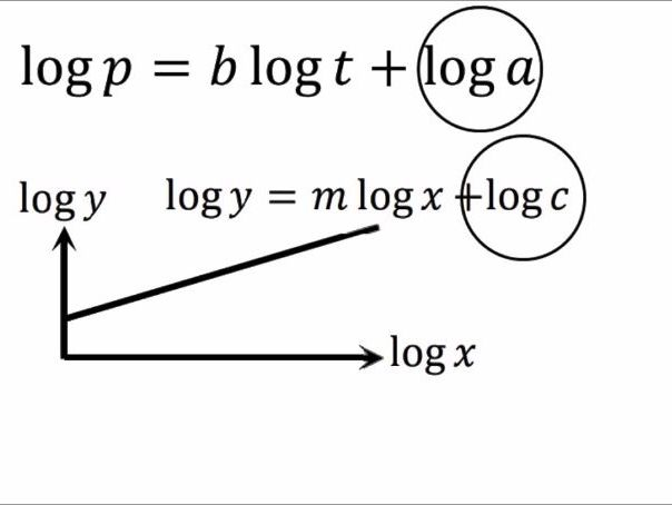 Log, exponential to linear graph