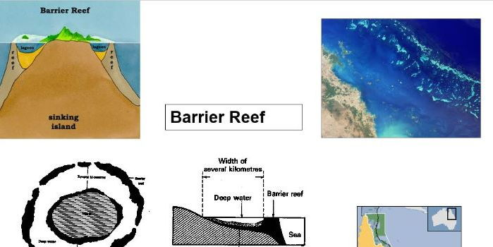 GCSE 9-1; Ecosystems - types of coral reef and Darwinian theory of atoll formation