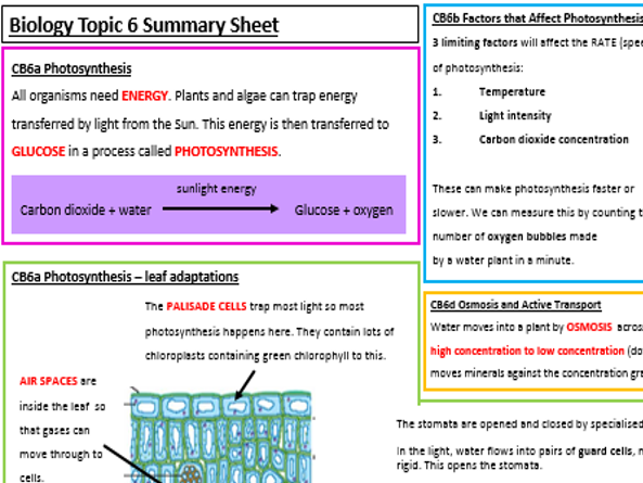 Edexcel Biology CB6 Revision Summary Worksheets