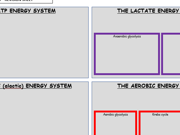Energy systems revision sheet - BTEC National Sport Unit 1 - Anatomy & Physiology - Topic E