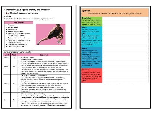 GCSE PE - OCR (9-1) - Structure Strip - Short Term Effects of Exercise - Extended Question Worksheet