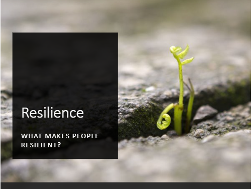 Resilience Assembly