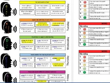 WONDER vocabulary development programme- blank