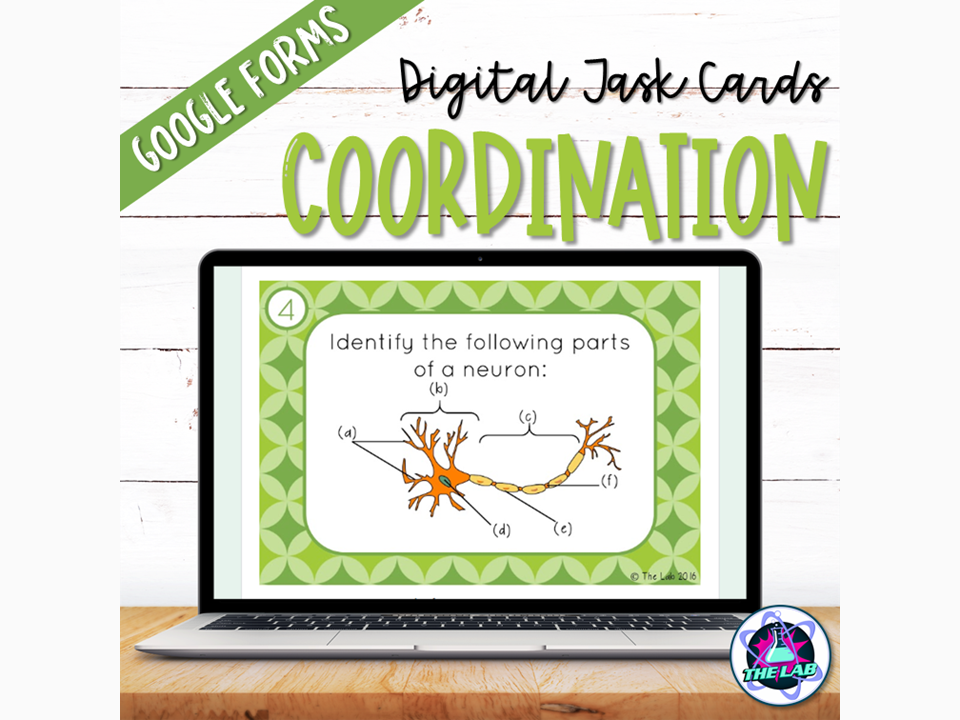 Coordination Digital Task Cards