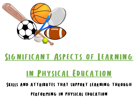 Significant Aspects of Learning in P.E. Lanyard Cards
