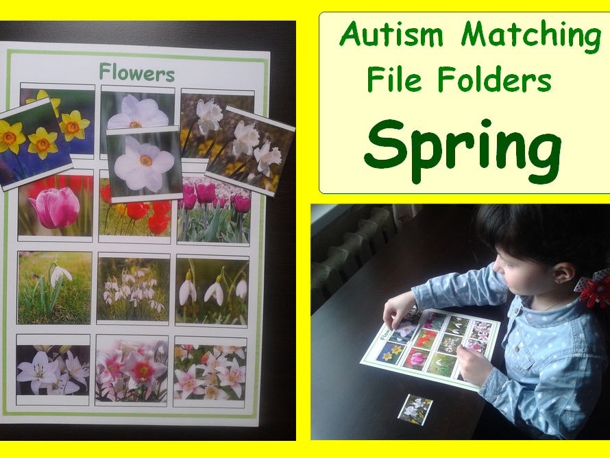 Autism Matching File Folders - Spring Activity