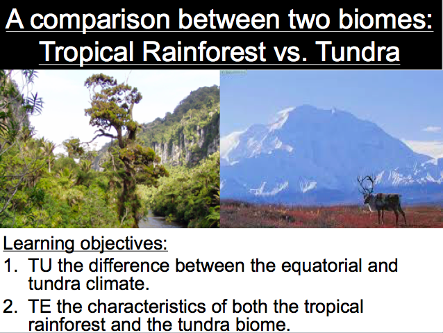 Lesson 3: A comparison between two biomes: Tropical Rainforest vs. Tundra