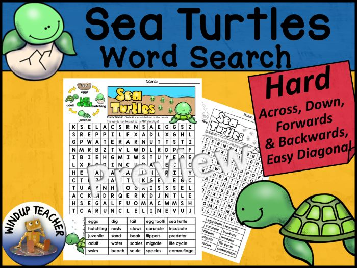 Sea Turtle Life Cycle Word Search HARD Puzzle