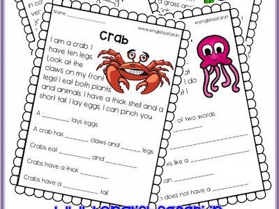 Reading Comprehension - sea animals