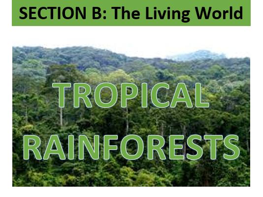 GCSE Geography AQA 9-1 Tropical Rainforests Workbook SoW