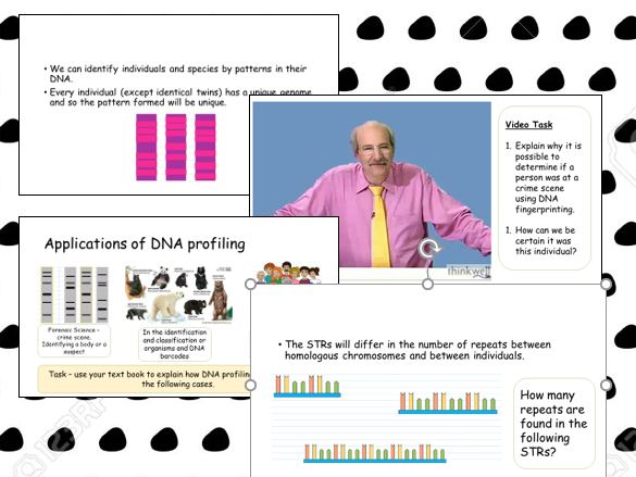 Polymerase Chain Reaction and DNA Profiling