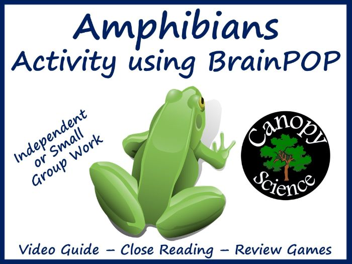 Amphibians Activity using BrainPOP