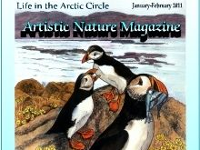 """Life in the Arctic Circle"" Art & Nature-Science Unit"