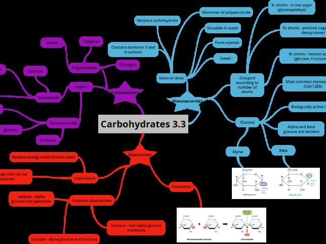 OCR A level Biology Biological Molecules Mindmaps