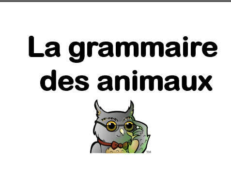 les articles_french articles