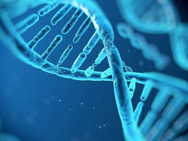 DNA Lesson (14 -16 level)