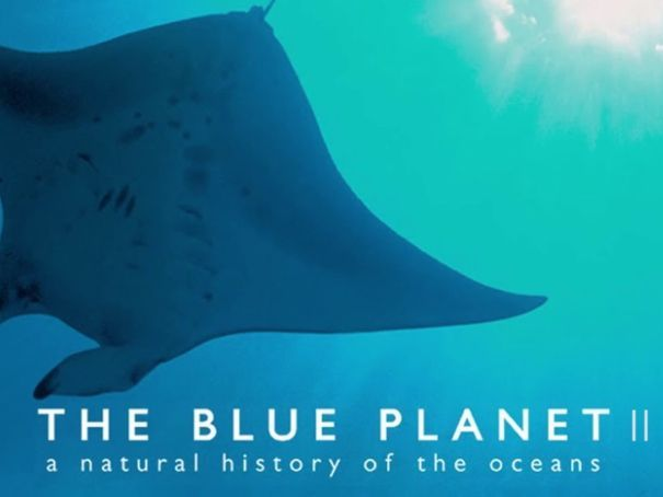 Blue Planet 2 - Full Activity Book (32 pages)