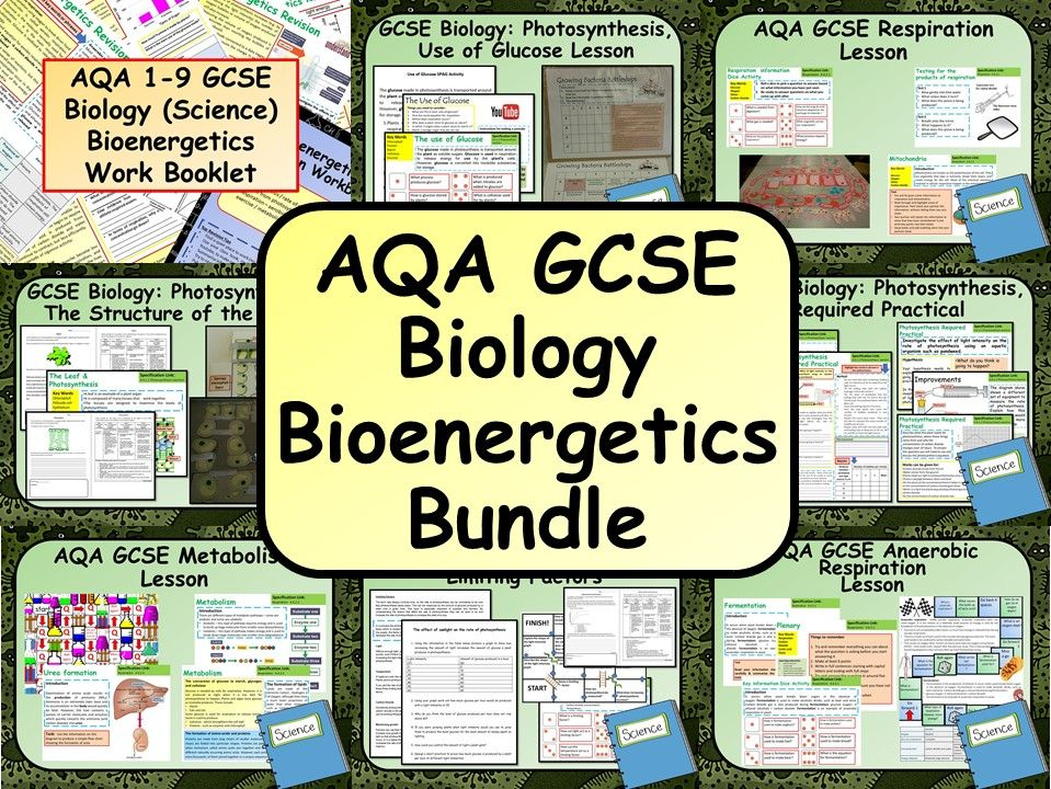 AQA KS4 GCSE Biology (Science) Bioenergetics Bundle