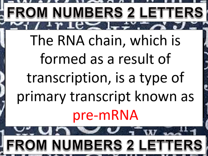 Topic 4.2: DNA and protein synthesis (AQA A-level Biology)