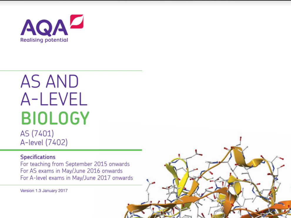 AQA A-level Biology Topic 2 Worksheet Bundle