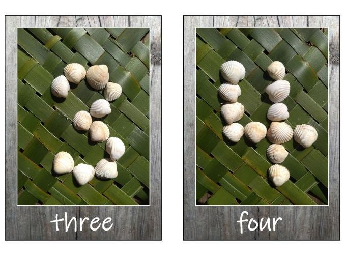 Nature Numbers with shells and sticks-beachy set 0-20