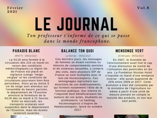 Le Journal 8 - A Level FRENCH