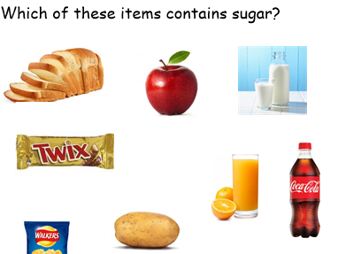 Sugar Non Chronological report KS2