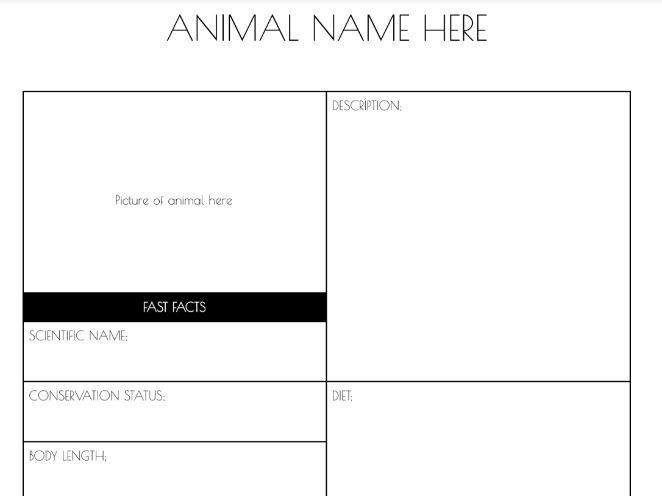 BTEC L3 Production Arts Full body ANIMAL Make up MU - worksheets, peer self marker & tracker