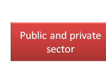 Public and Private sectors and Privatisation