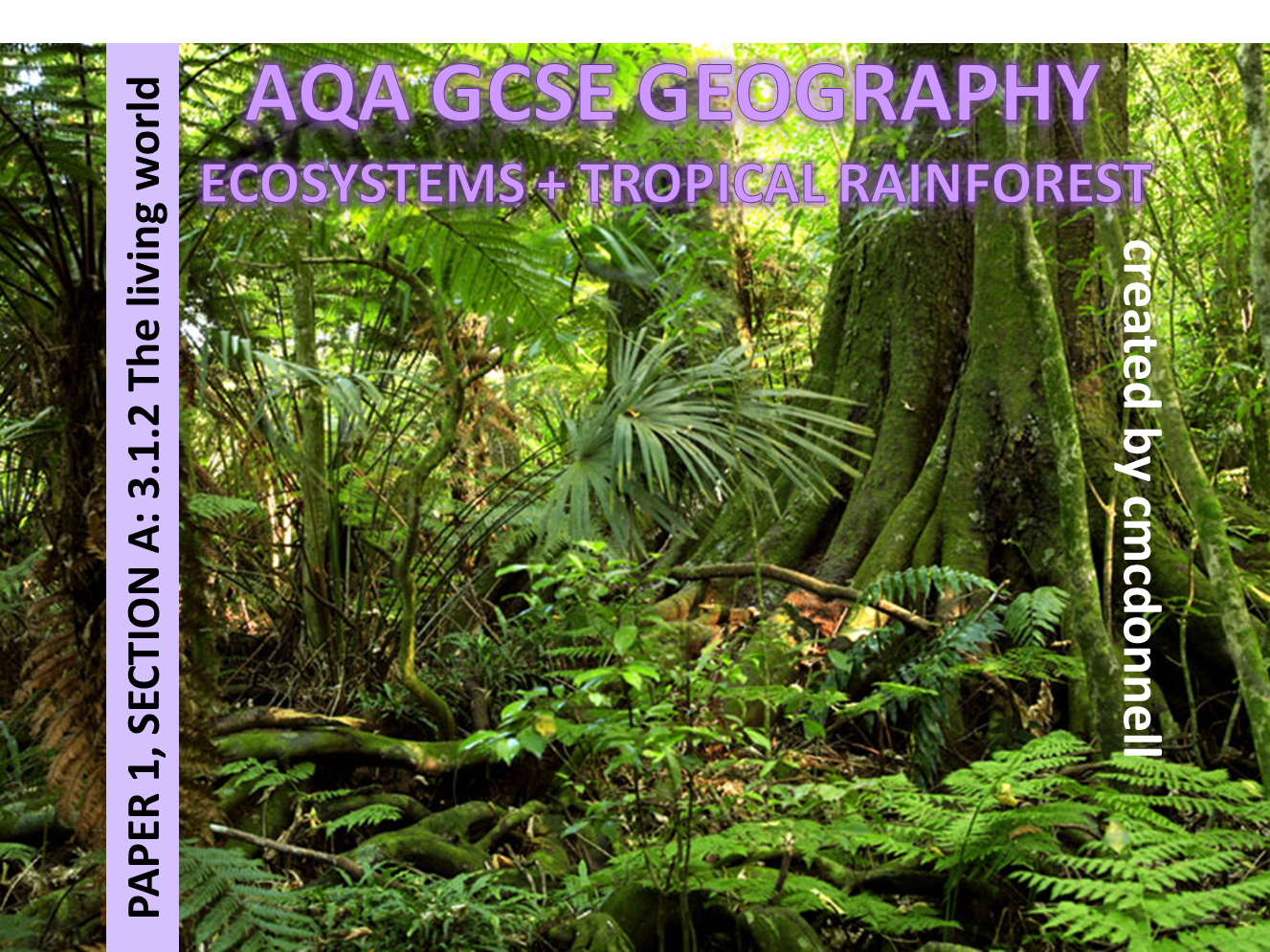 ECOSYSTEMS + TROPICAL RAINFORESTS AQA GCSE (2016+)