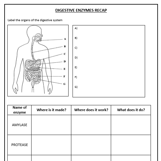 Daniellewm23 39 S Shop Teaching Resources Tes