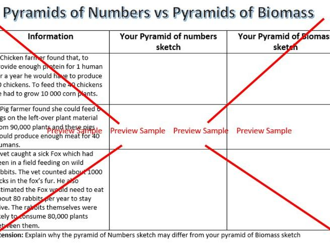 Pyramids of Number vs Pyramids of Biomass