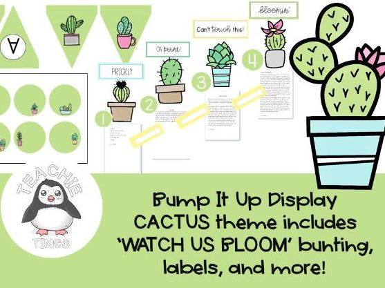 Bump It Up Wall Display – Cacti/Succulent Theme