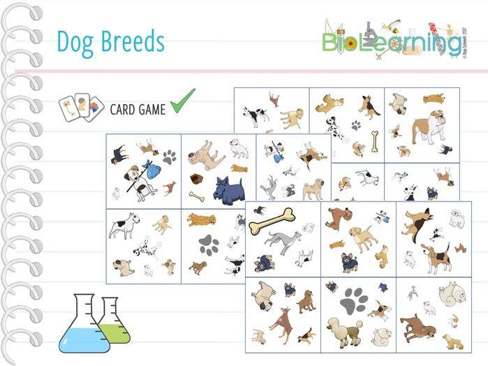 Dogs - Card Game (KS2/KS3)