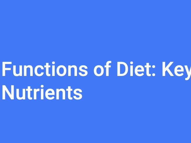 A-Level PE (OCR): Diet & Key Nutrients
